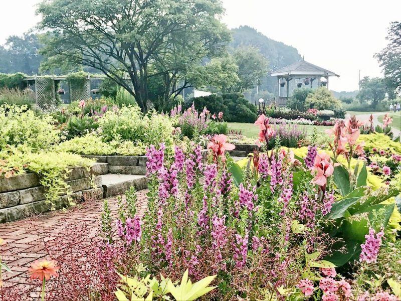 Garden open house has dessert theme | The Bargain Hunter