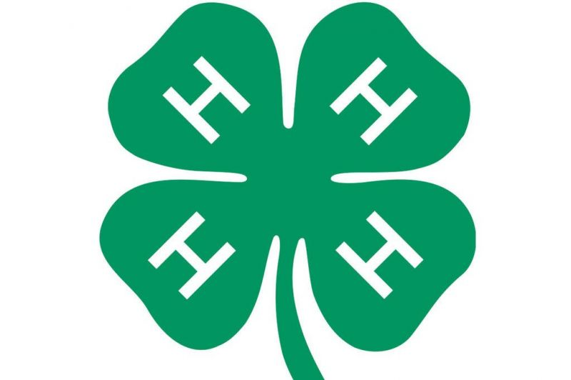 Happy Harvesters 4-H club continue online mee