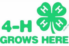 Holmes OH-4H Club holds last two meetings