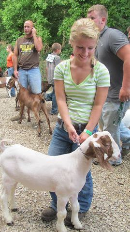 Market goat competition shows three of four top…   The
