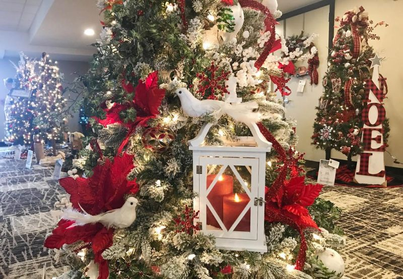 Pomerene Auxiliary lights up Christmas during tree festival