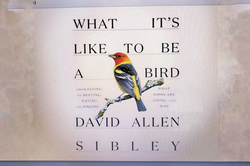 With new book, Sibley does it again