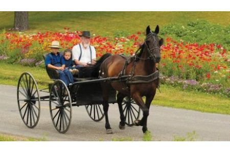 Ohio's Amish Country Magazine
